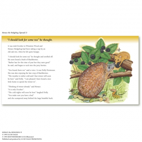 horace the hedgehog childrens book art illustrator